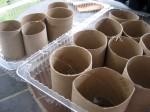 Toilet paper rolls for planting seedlings.